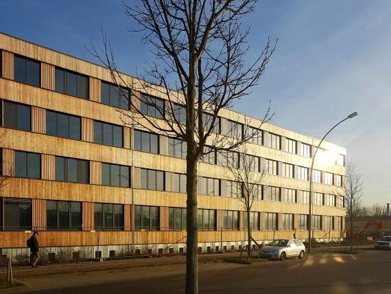 Neubau Firmengebäude Flexim GmbH Berlin_brandschutz plus eberl-pacan brandschutzplaner_Berlin_Foto Baustelle Holzfassade 2