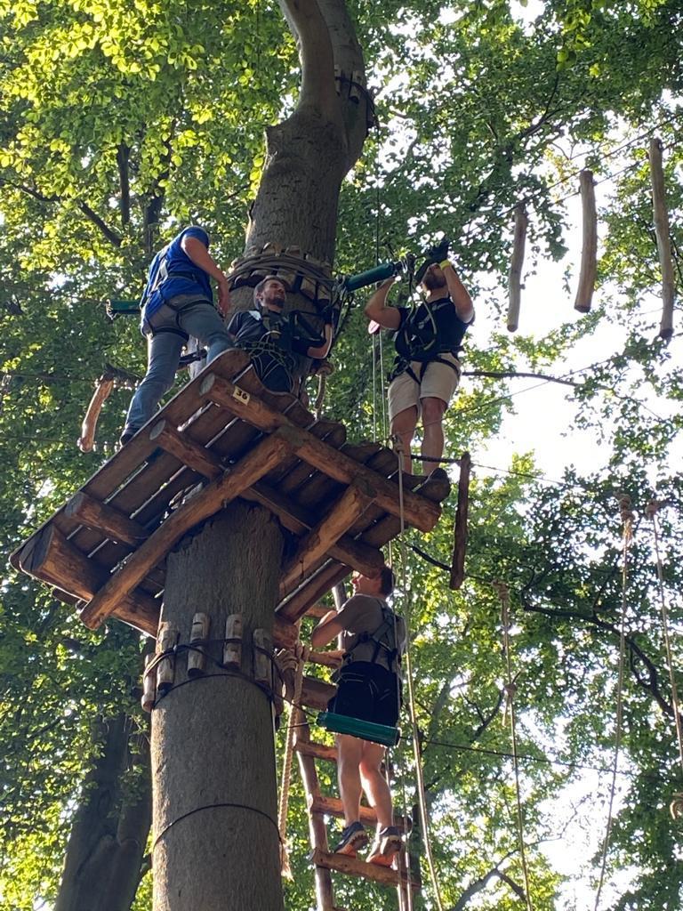 brandschutz-plus-eberl-pacan-brandschutzplaner_Ausflug Kletterwald Jungfernheide_Baum klettern Mitarbeiter